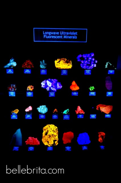 Feeling afraid of the dark even while admiring luminescent rocks in a geology #museum in #Colorado