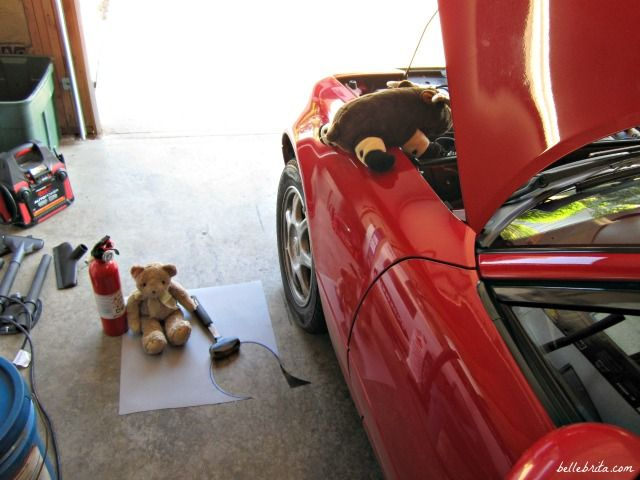 Stuffed animals for the young and the young at heart, working on my husband's Miata.