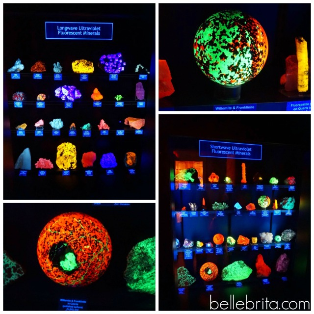 Luminescent rocks at Colorado School of Mines Geology Museum