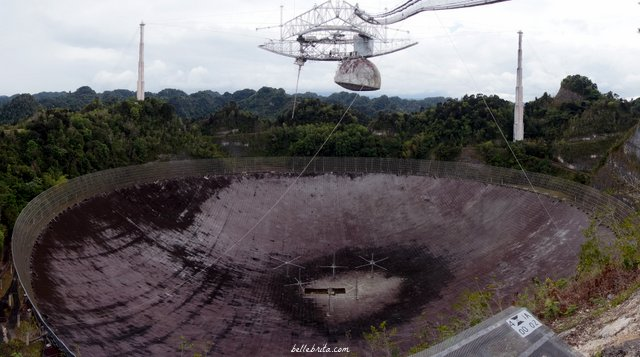 arecibo singles Arecibo currently is used for radio astronomy,  because it is the largest and most sensitive single-dish radio telescope in the world,.