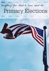 Why You Need to Vote in the Primary Elections