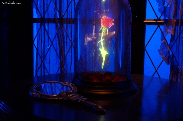 Beast's enchanted rose at Be Our Guest restaurant | Belle Brita