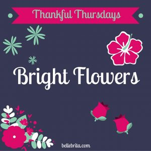 Thankful Thursday: Bright Flowers
