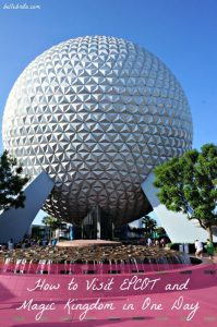 Disney World: Two Parks in One Day