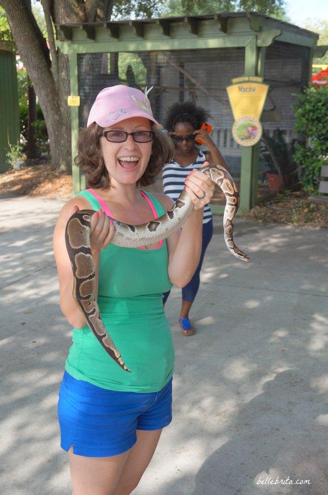 Holding a snake in Wild Adventures in Valdosta, GA! | Belle Brita
