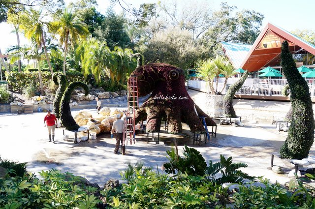 7 tips for the perfect day at busch gardens tampa bay belle brita for Best day go busch gardens tampa