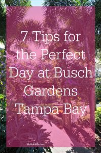 Follow these tips to make the most of your Busch Gardens Tampa Bay vacation! Pin now, read later | Belle Brita