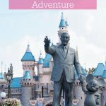 One Crowded Day at Disneyland & California Adventure