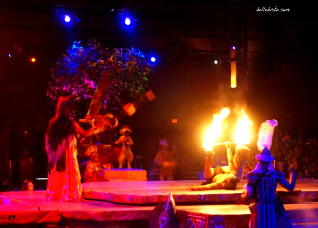 Who doesn't appreciate a good fire show? The Festival of the Lion King was AMAZING! | Belle Brita