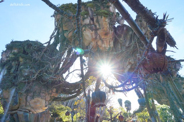 Visiting Pandora in Animal Kingdom truly feels like visiting another planet. It's surreal! | Belle Brita
