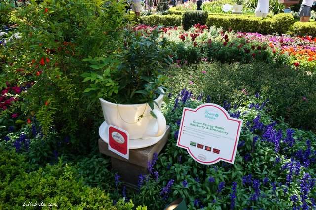 During the 2018 Flowers and Garden Festival, I loved discovering this darling tea garden in EPCOT's United Kingdom. | Belle Brita