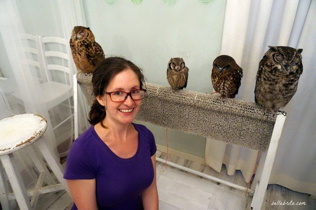 Woman with four owls in Akiba Fukurou Owl Cafe