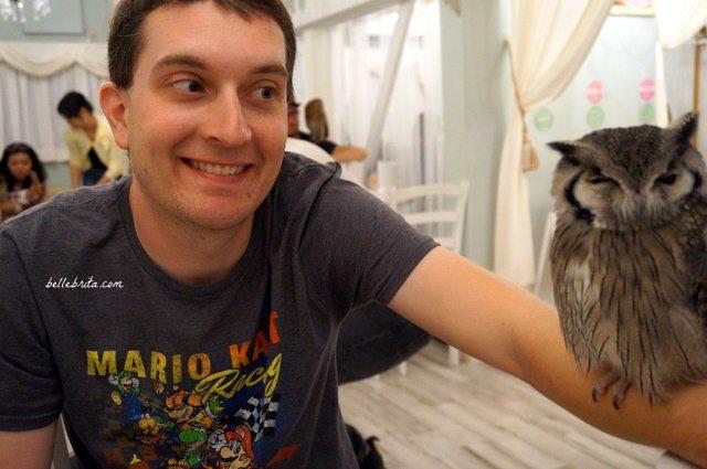 Man holding owl in Akiba Fukurou Owl Cafe