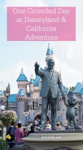 Even on a crowded Saturday in May, Disneyland and California Adventure are a fun destination for all ages. These tips explain how my husband and I prioritized attractions, optimized our FastPasses, chose the best food, and more for a busy day of Disney magic! | Belle Brita