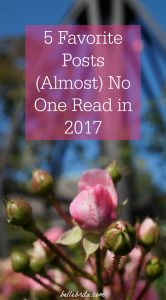 Why does a well-written blog post fail? Is it the topic, the time of year, or something else entirely? I analyze 5 well-written blog posts on why they didn't gain many page views in 2017. | Belle Brita