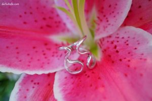 Ana Luisa Barbara Cocktail Ring | Sterling silver ring against a pink stargazer lily. | Belle Brita
