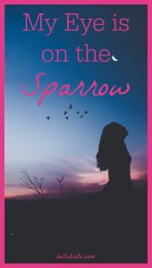 "Silhouette of woman against sunset, birds in the sky. Text overlay reads: ""My Eye is on the Sparrow"""